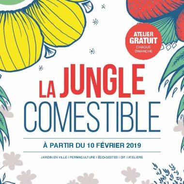 Atelier - La jungle comestible